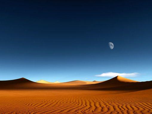 homokszemek